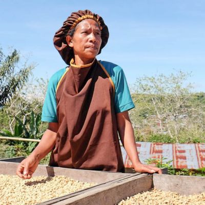 Drying coffee in Flores