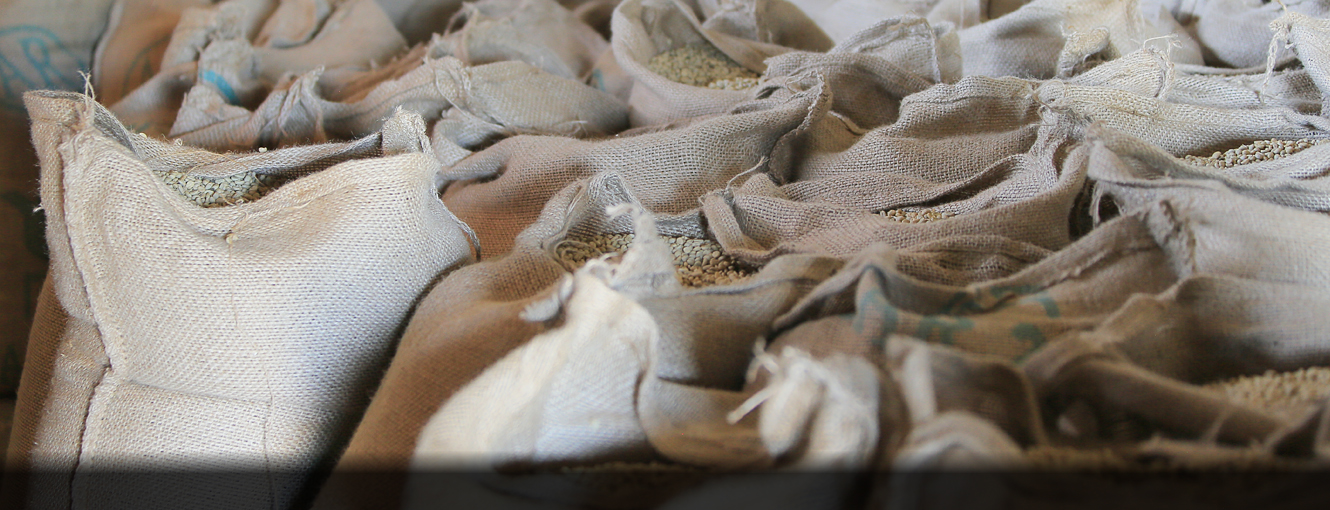 Coffee being stored at Ethiopia Qota Cooperative. Click here to learn more about our Ethiopian green coffee.