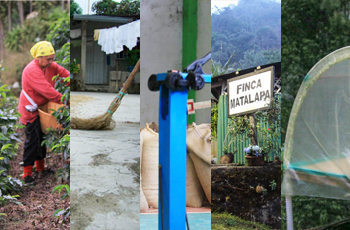 Vertical collage with photos of coffee farms and coffee farmers